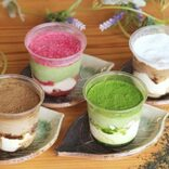 京都限定がお取り寄せ可能に♡抹茶の絶品ティラミス