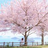 【お花見特集2020:まとめ】春爛漫!絶景を望める、全国のお花見スポット36選