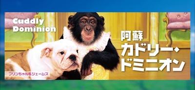 くん パン 志村 動物園