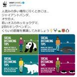 人との適切な距離は「ジャイアントパンダ」1頭分! WWFジャパンのツイートに注目集まる