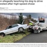 「犬に運転を教えてた」高速道路で車2台に追突した危険運転の男が逮捕(米)