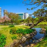 【2020年4月5日更新】新型コロナウイルスによる全国の公園・庭園の休園情報