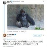松本人志さんの「写真で一言」ツイートにロッチ中岡さんが「おたくのタレントが反社の人と……」とタイムリーなネタを返して大反響