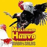【ビルボード】INABA/SALAS『Maximum Huavo』が総合アルバム首位 JUJU/HIMEHINAが続く