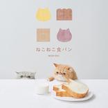 ねこ形食パンとチョコペンがセット!「ねこねこ食パン」オンライン販売を開始