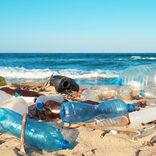 中国の規制緩和でビーチに人が殺到 不潔な行動に現場からは悲鳴