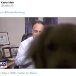 自宅から天気予報を伝えていたキャスター 飼い犬に画面を乗っ取られる(米)<動画あり>