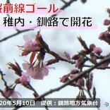 桜前線ゴール! 北海道 稚内と釧路で桜開花