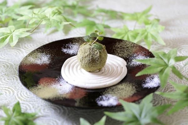 盆栽アイス こけまる