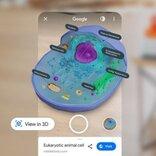 「Google AR」を使って微生物や人体や宇宙服を間近で見てみよう