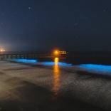 夜のビーチで波が光る→パーリーピーポーが集まる→近隣住民が困る
