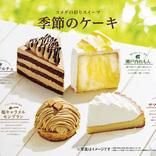 コメダに夏の新作ケーキが登場中!爽やかな味わい「サマーチーズ」など4種類