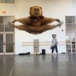 世界で人気「踊りがキレキレのくま」にインタビューしてみた/ボストン・バレエ団