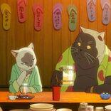 志田未来×花江夏樹『泣きたい私は猫をかぶる』特別映像が公開
