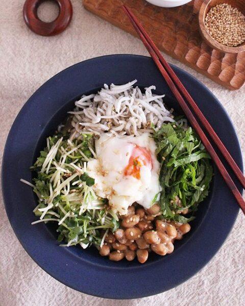 大量消費レシピ!納豆と薬味のぶっかけ冷奴