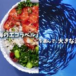ココリコ田中も応援! MSCの「海のエコラベル」新キャンペーン開始、「しかるねこ」動画も話題