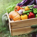 たむらけんじ、新しい趣味を公開「安心安全な自家製野菜を作るため…」