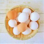 濃厚なしょっぱさがたまらない!アジアで大ブームの「塩卵」とは?