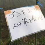 農家を苦しめるマナーの悪い人 田んぼ前にあった2枚の貼り紙に「許せない」の声