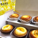 期間限定「オレンジヨーグルトチーズタルト」をプレーンと食べ比べ!【BAKE CHEESE TART】