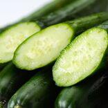 ギネス認定の低カロリー野菜、きゅうりは「ビタミンCを壊し健康に悪い」って本当?