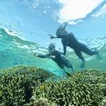 星のや竹富島、より沖縄らしい旅を楽しむ「珊瑚美(ちゅ)ら滞在」実施