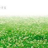 松本潤主演、究極の純愛映画『僕は妹に恋をする』配信開始