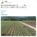 その速さに驚きの反応多数! 北海道の農地を疾走するクマをドローン撮影した動画
