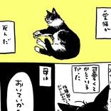 家で度々起こっていた『不思議な出来事』 愛猫が亡くなった後の夜…?