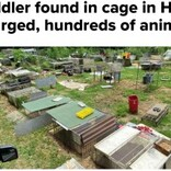 犬用ケージに入れられた1歳児、600匹超の動物と共に劣悪な環境から救出される(米)<動画あり>
