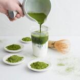 タピオカの次は日本茶。抹茶ラテから深蒸し茶まで美味しい淹れ方を聞いた