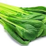 """コロナ禍、免疫力のアップとダイエットにも効果的な""""青菜ごはん""""を食べよう"""