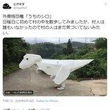 「かわいい」「楽しそう」の声続出! Twitterで話題のティラノサウルス風外骨格恐竜「うちのシロ」製作秘話