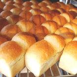 【鎌倉土産】行列する価値あり!「ブレッドコード」の食パンを海辺で食べ比べ