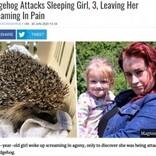 3歳少女が就寝中にベッドで野生のハリネズミに襲われる(英)