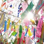 「七夕」の由来や願い事を笹に飾る理由、行事食を知ってる?