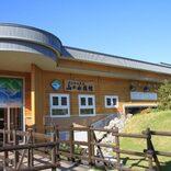 北海道のイケメン水族館館長が話題 「ボタンを押して気軽に呼んで」