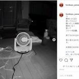 ペットカメラが捉えた愛犬以外の姿…アキナ山名の投稿にファン恐怖「最後から2個めの写真…」