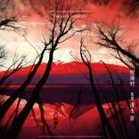 『犬鳴村』につづく「恐怖の村」第2弾!『樹海村』クランクインへ 主演は山田杏奈&山口まゆ