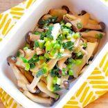 きのこの常備菜レシピ特集!美味しい簡単作り置きおかずで食卓にもう一品!