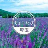 埼玉県物産観光協会、「県民向け夏の埼玉観光モニタープラン」を販売