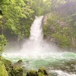 中伊豆観光で外せない絶景パワースポット!浄蓮の滝現地ルポ~お土産情報も~