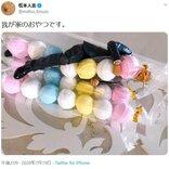 松本人志さん「我が家のおやつです。」画像ツイートに「いいね」13万超 大喜利風の返信も多数