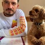 オーランド・ブルーム、行方不明の愛犬を思い悲痛なメッセージ綴る