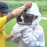 高嶋ちさ子、スズメバチ駆除に挑戦「刺される気がしない」