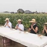 "NEWS小山&加藤、農家を助ける""収穫ヘルパー""に挑戦"