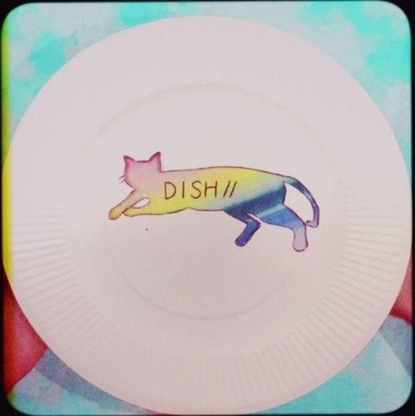 猫 Dish
