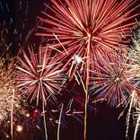 新型コロナで続々中止、今後開催されたら行きたいと思う花火大会は?
