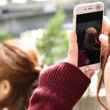 佐野正弘のケータイ業界情報局 第30回 菅官房長官が再び携帯料金の値下げに言及、その根拠に違和感を抱く理由