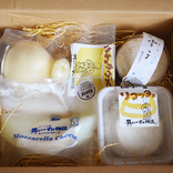 【広島県お取り寄せルポ】4種の個性的チーズを堪能!「コンテスト受賞チーズセット」